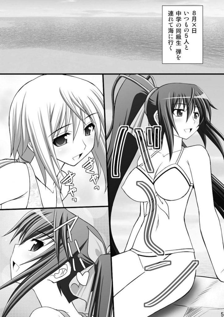 【シリーズ・NO.3】一夏の調教日誌III -女の子に目隠しして親友と入れ替わってみるテスト-【IS・ハーレム兄妹エロ同人誌】
