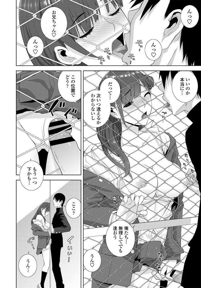 【エロ漫画】学校で義兄とフェンス越しにセックスする巨乳JK!フェンス越しにチンポとマンコを弄り合いびしょ濡れになったマンコに中出しセックス!【志乃武丹英】